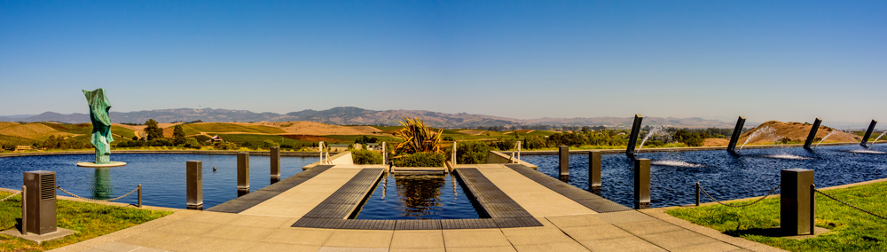 Artesa winery and Contemporary Landscaping