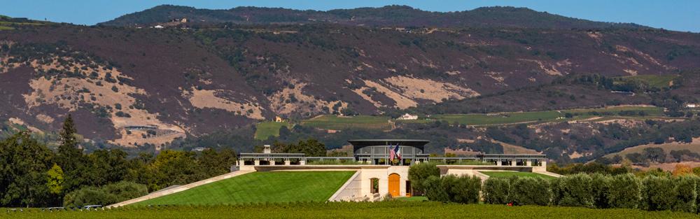 Landscape of Artesa Vineyard